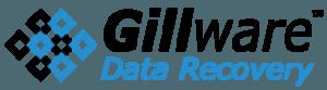 Techvera Gillware partner page