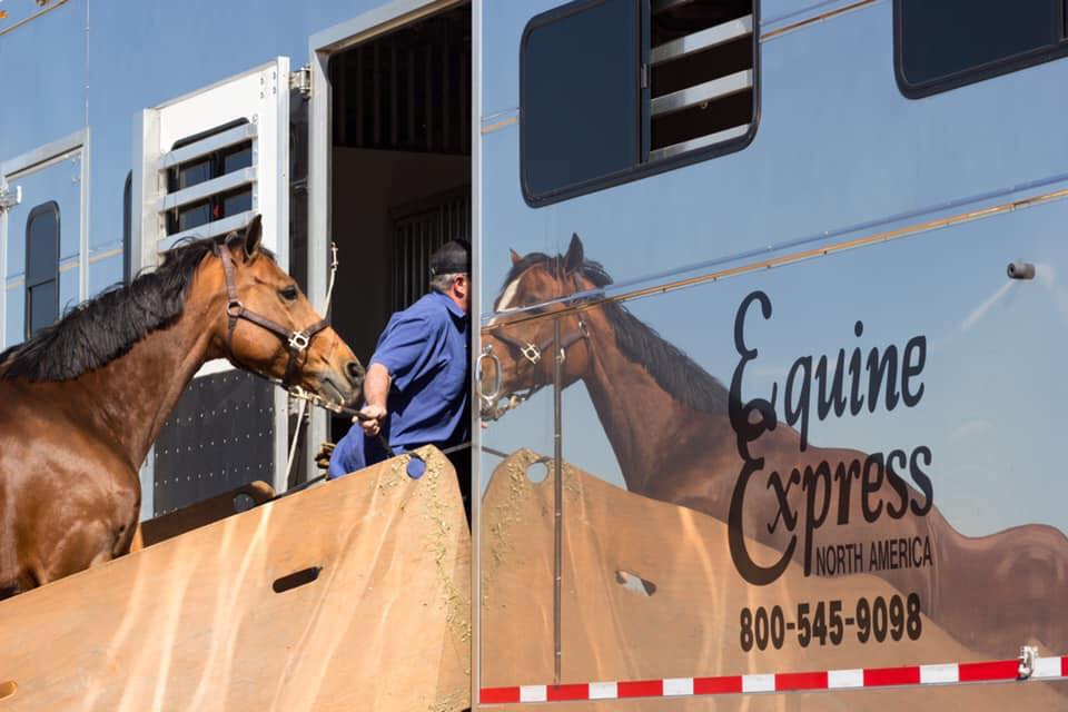 Equine Express testimonial